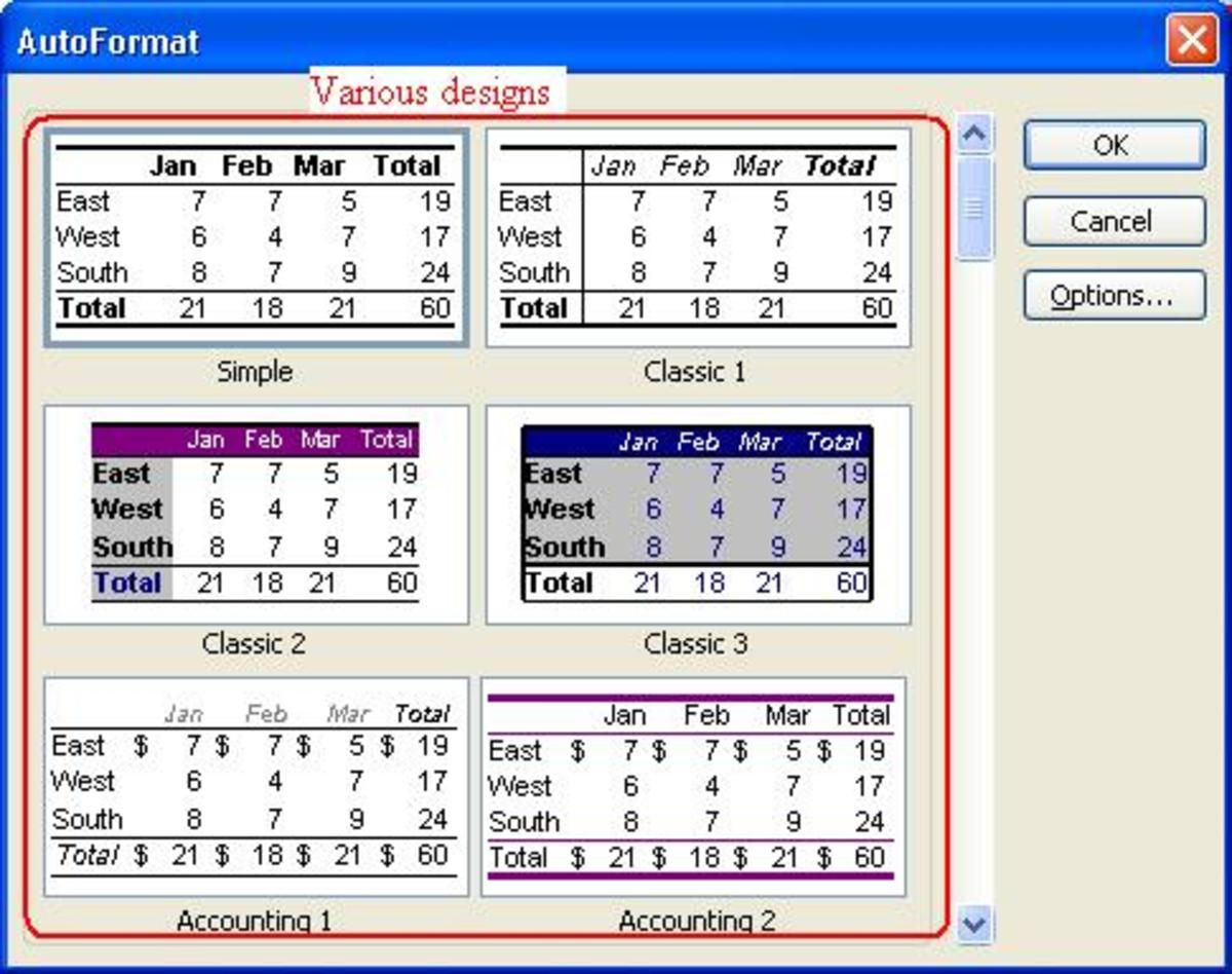 Using The Format Menu Of Microsoft Office Excel
