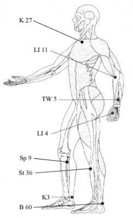 ACUPRESSURE: PRESSURE PONTS IN THE HUMAN BODY TO CURE