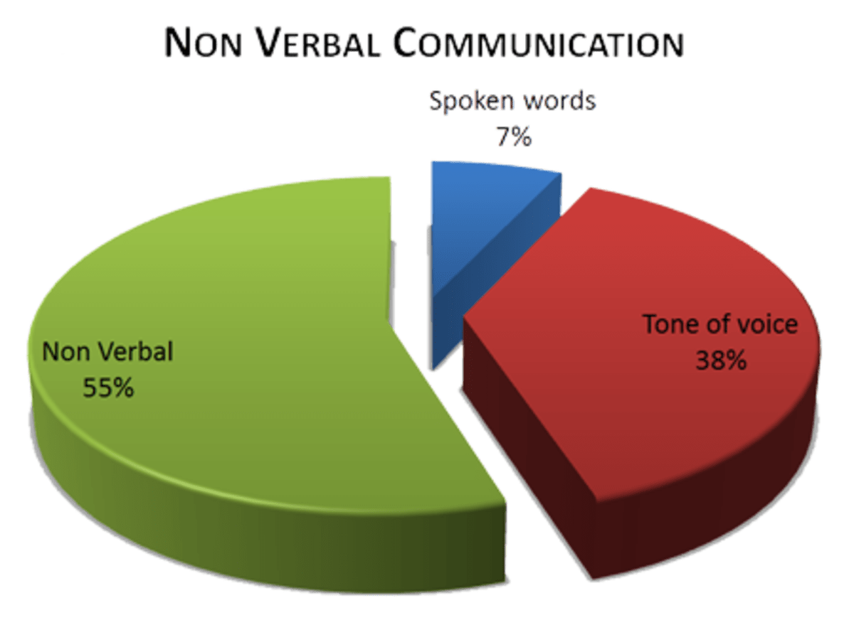 A Simple Guide To Non Verbal Communication