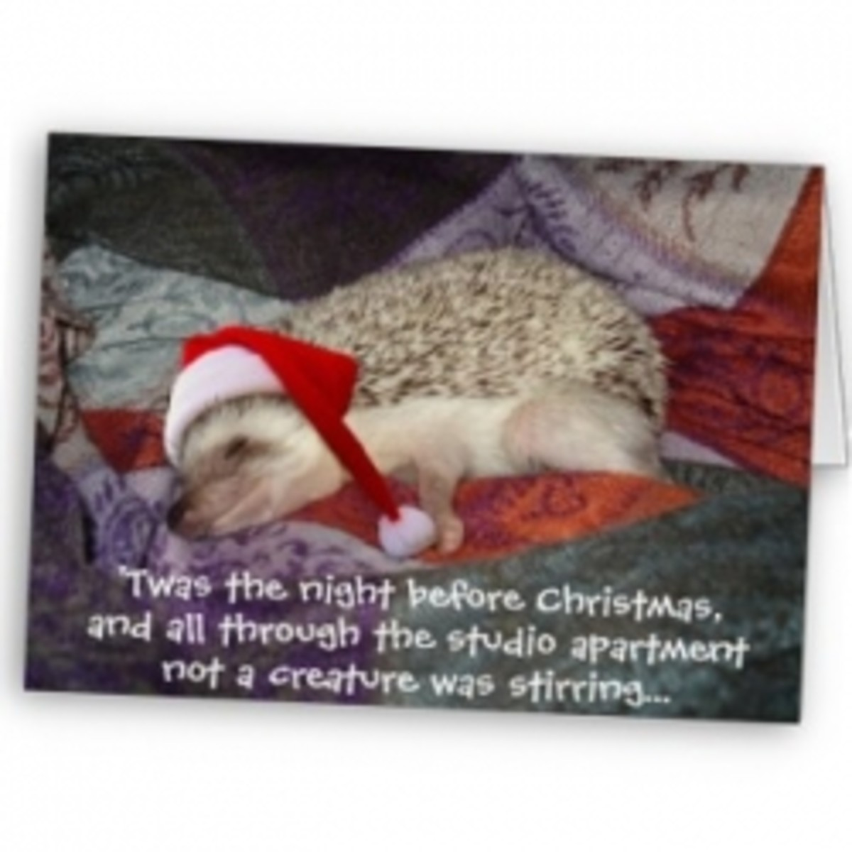 Funny Night Before Christmas Poems HubPages