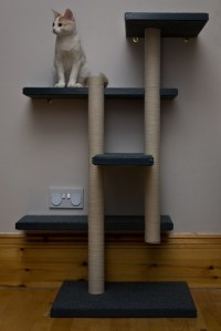 Make Your Own Cat Trees, Towers, and Other Structures ...