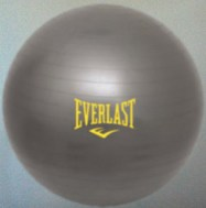 Everlast Yoga Ball
