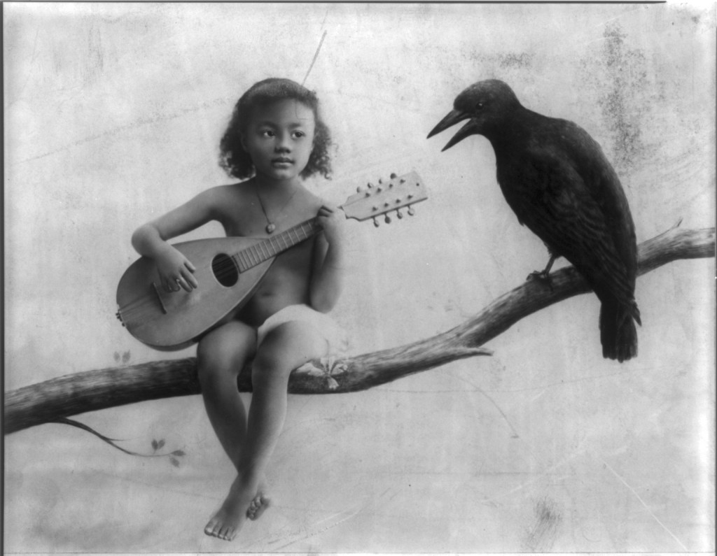 Bailey and a Crow Named Leo A Short Story by cam  HubPages