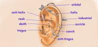 Why Do My Ears Hurt When I Wear Earrings Wearing Earrings ...