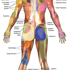 Pressure Points Diagram Massage Star Delta Control Circuit Healing Benefits Of Point Remedygrove Common Trigger And Referral Pain
