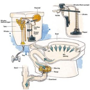 Common Toilet Troubles and How to Address Them | Dengarden