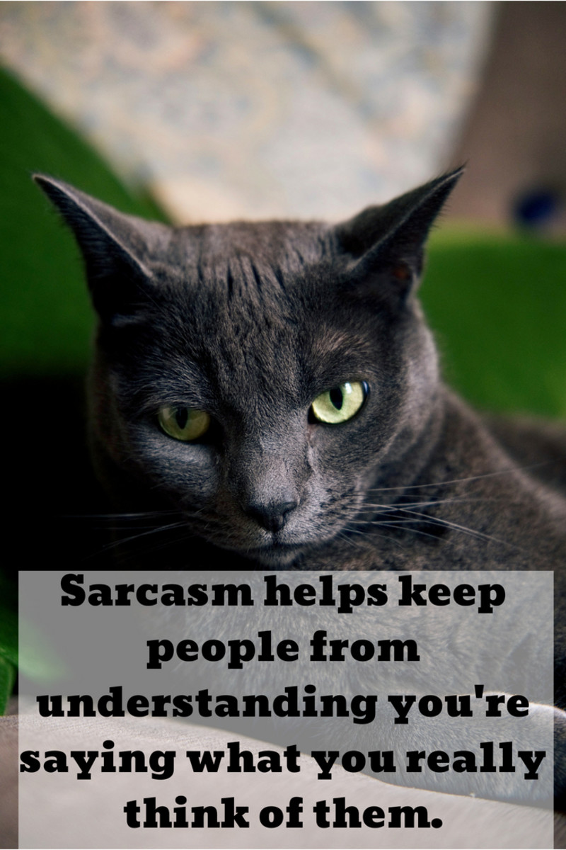 Sarcastic Quotes Of The Day