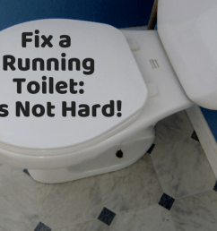 toilet repair how to fix a leaking or running toilet [ 1024 x 768 Pixel ]