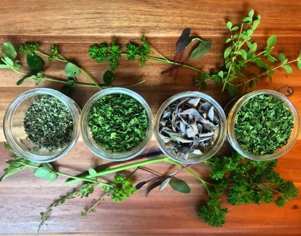 dry herbs garden