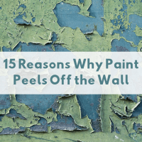 15 Causes of Peeling Paint on Walls, Ceilings, and Other ...