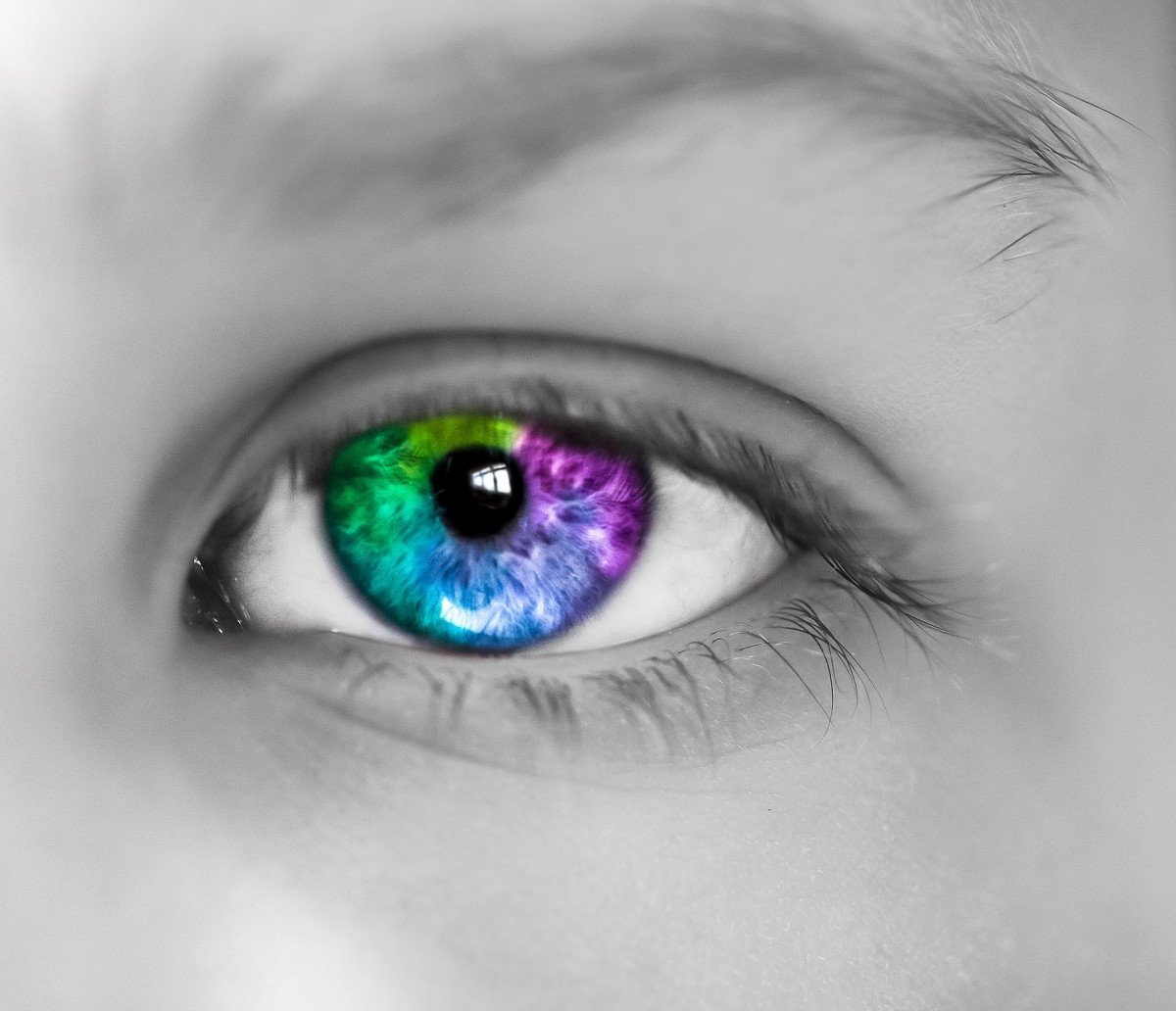 The Eye Color Chart