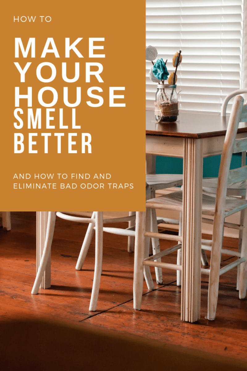 Things to Clean to Make Your House Smell Better  Dengarden