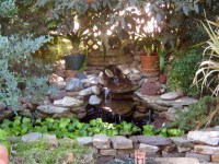 How to Plan for a Small Backyard Pond | Dengarden