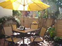 Designing My Patio Garden: Making the Most of Shade and ...