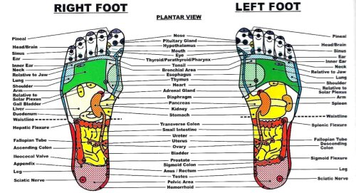 small resolution of diagram of foot pain area