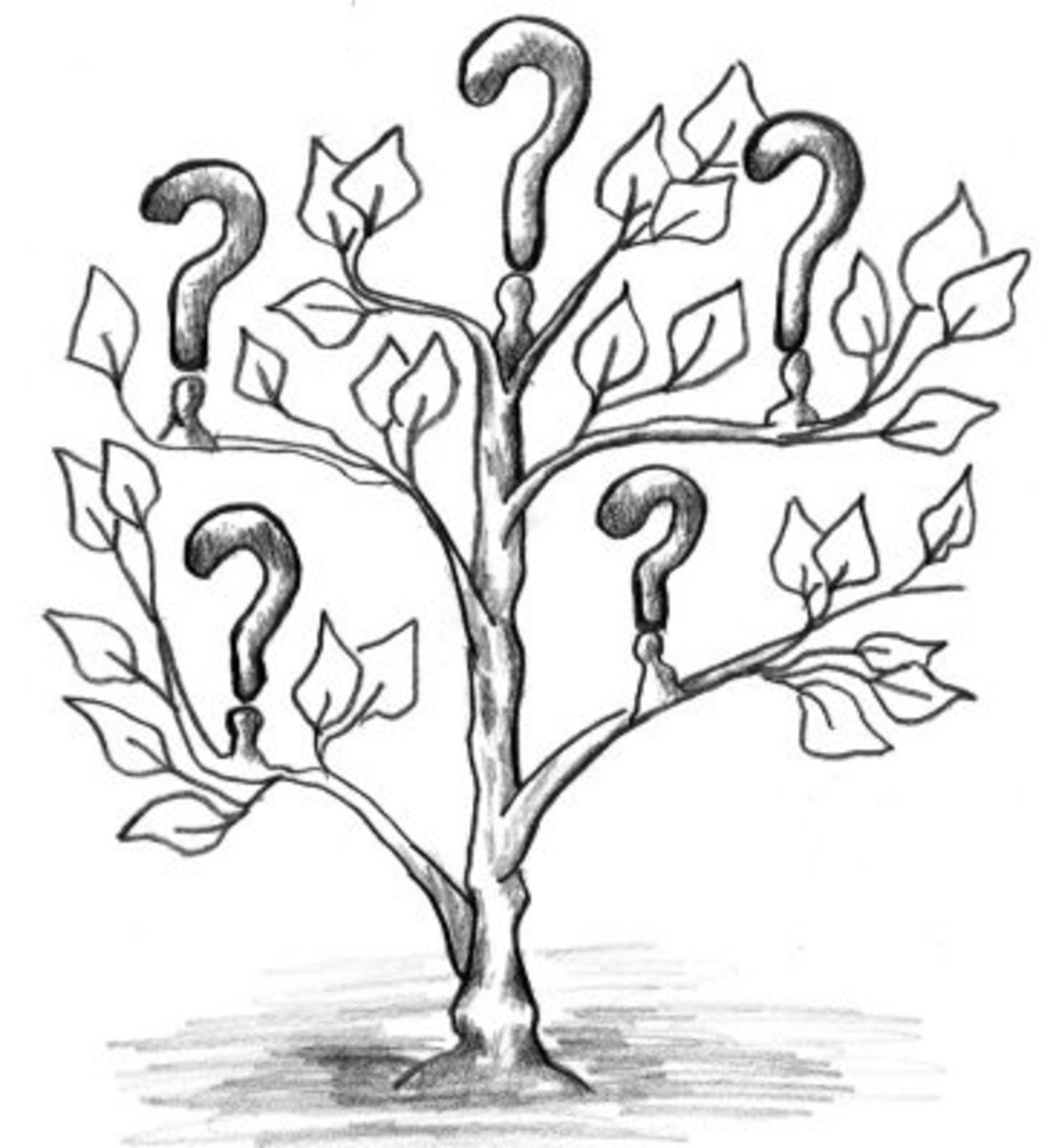 What Are Different Types of Questioning Techniques