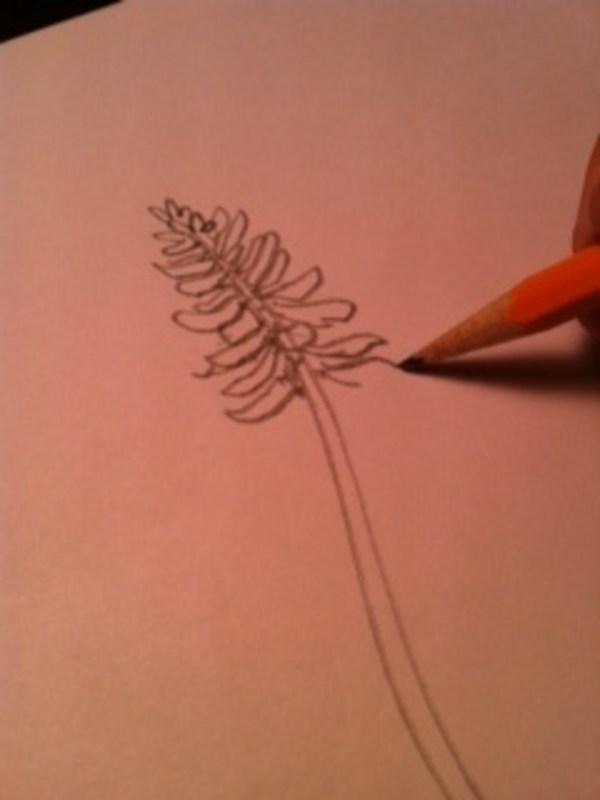 How to Draw Bluebonnet Flowers FeltMagnet