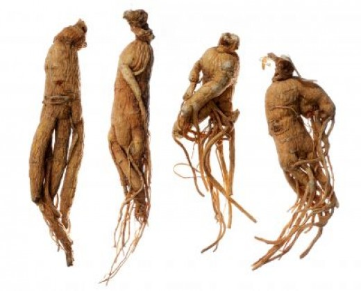 Image Result For What Are The Benefits Of Taking Ginseng