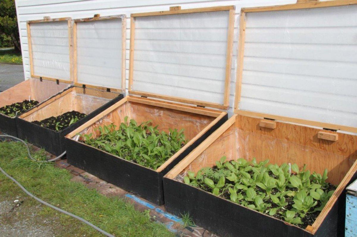 Pvc Cold Frames Small Gardens