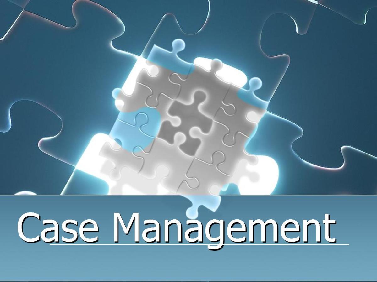 Case Management 101 The Basics