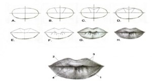 drawing lips draw step easy drawings portrait beginner beginners tips mouth simple faces ultimate google pencil realistic eye line face