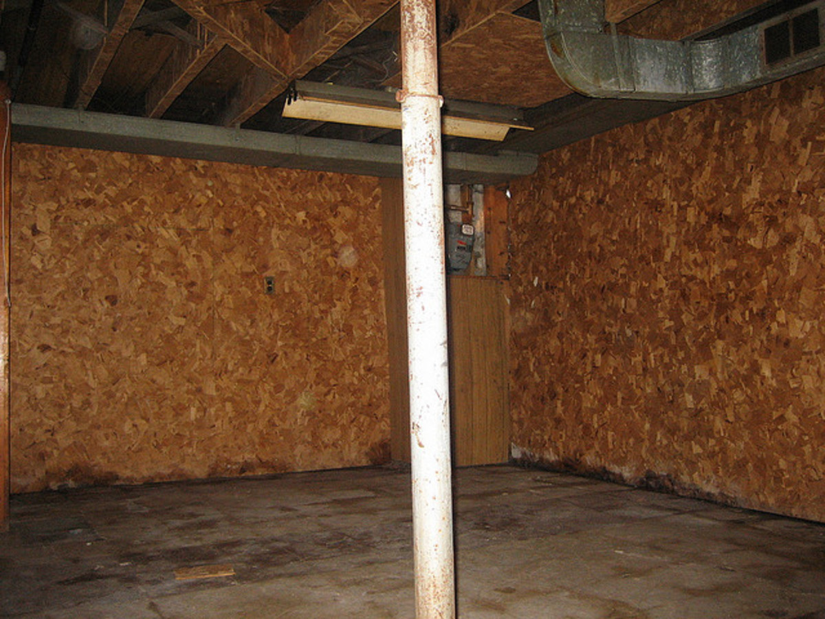 How To Get Rid Of Musty Basement Smells Dengarden