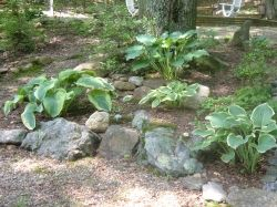 designing rock garden landscaping