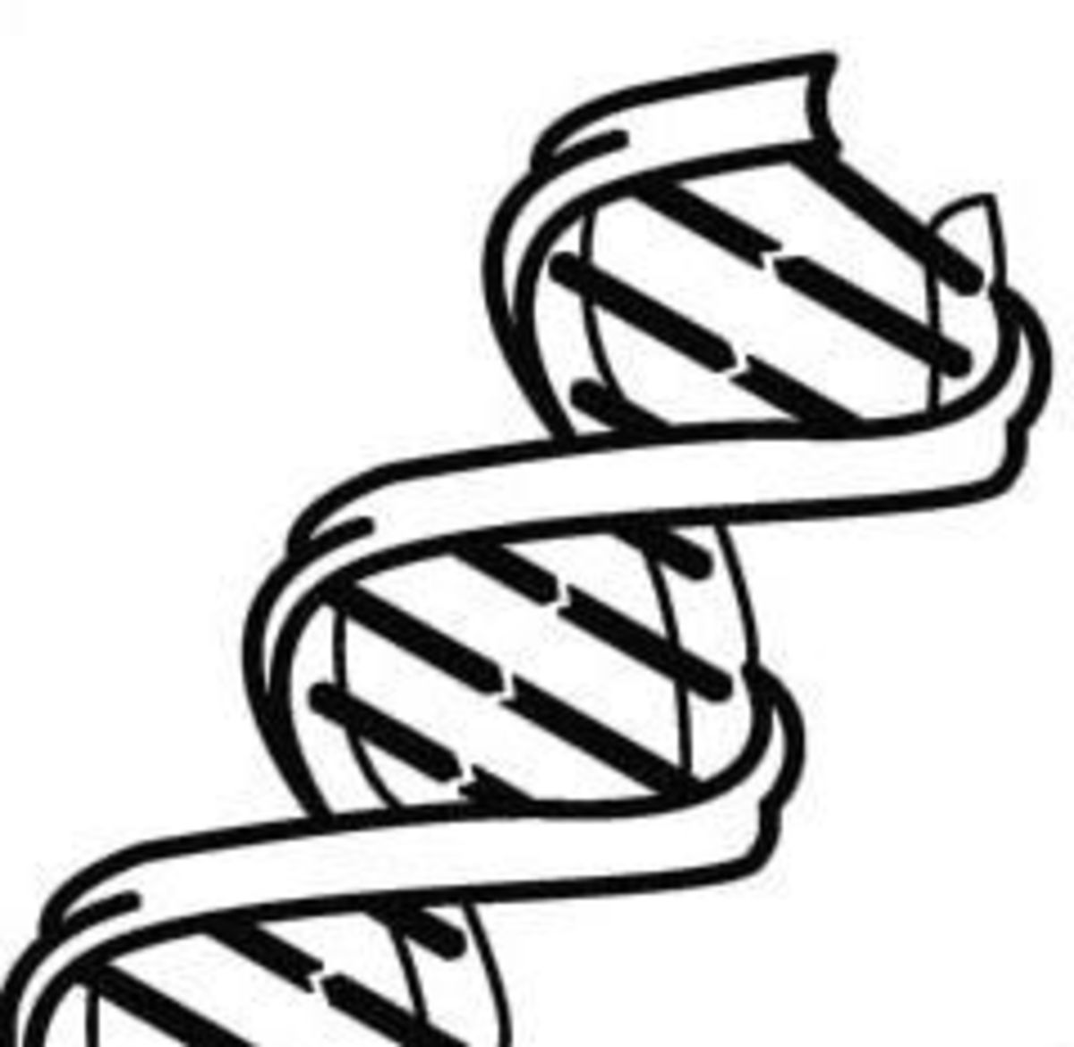 Genetics: Labs, Videos, and Information For High School