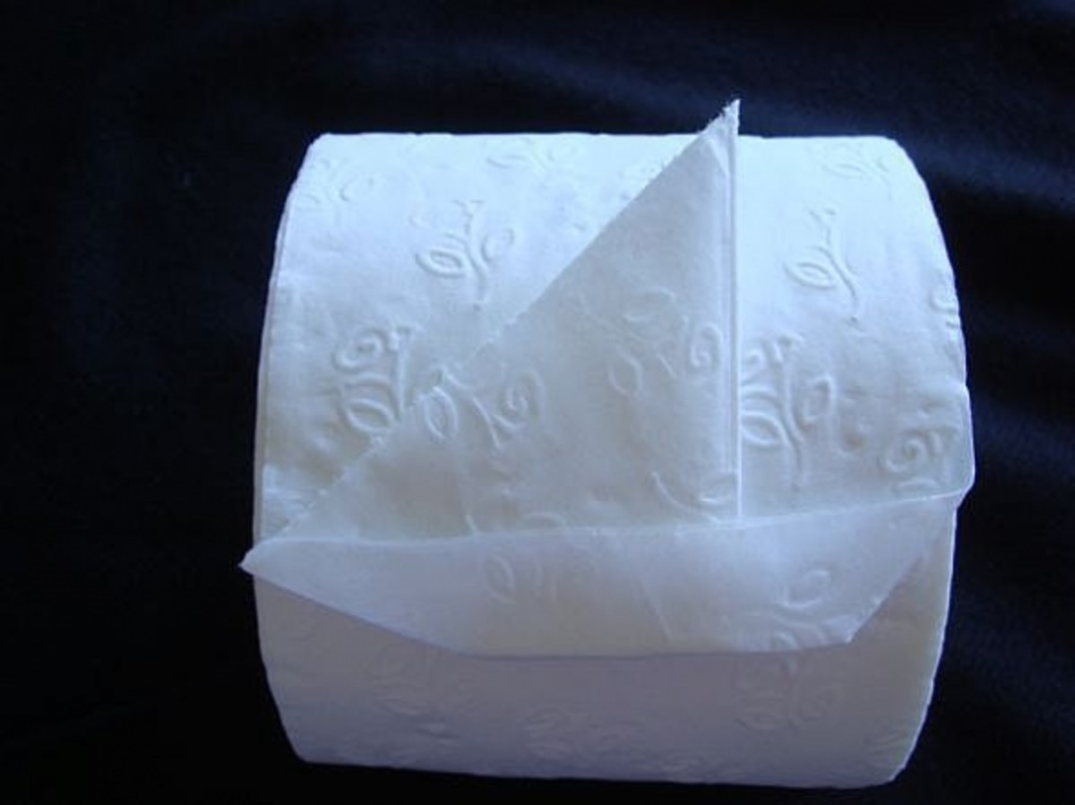 Toilet Paper Origami  HubPages