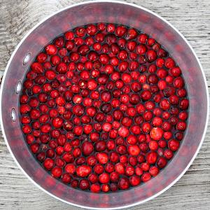 Cranberry pills side effects | General center ...