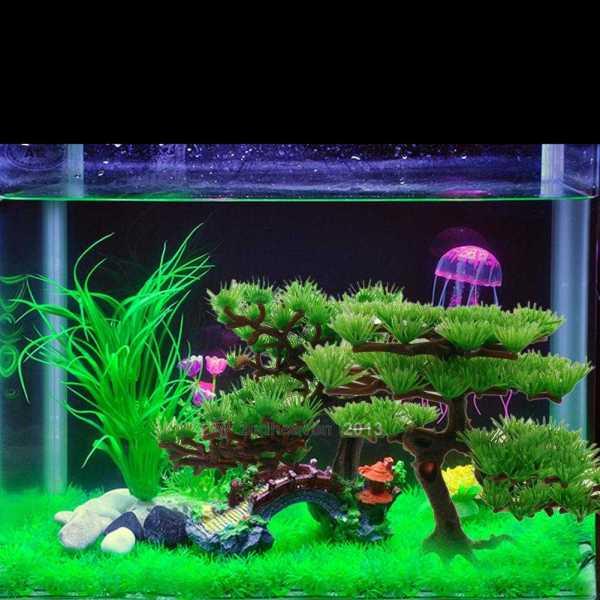 art aquarium fish tank tree plant