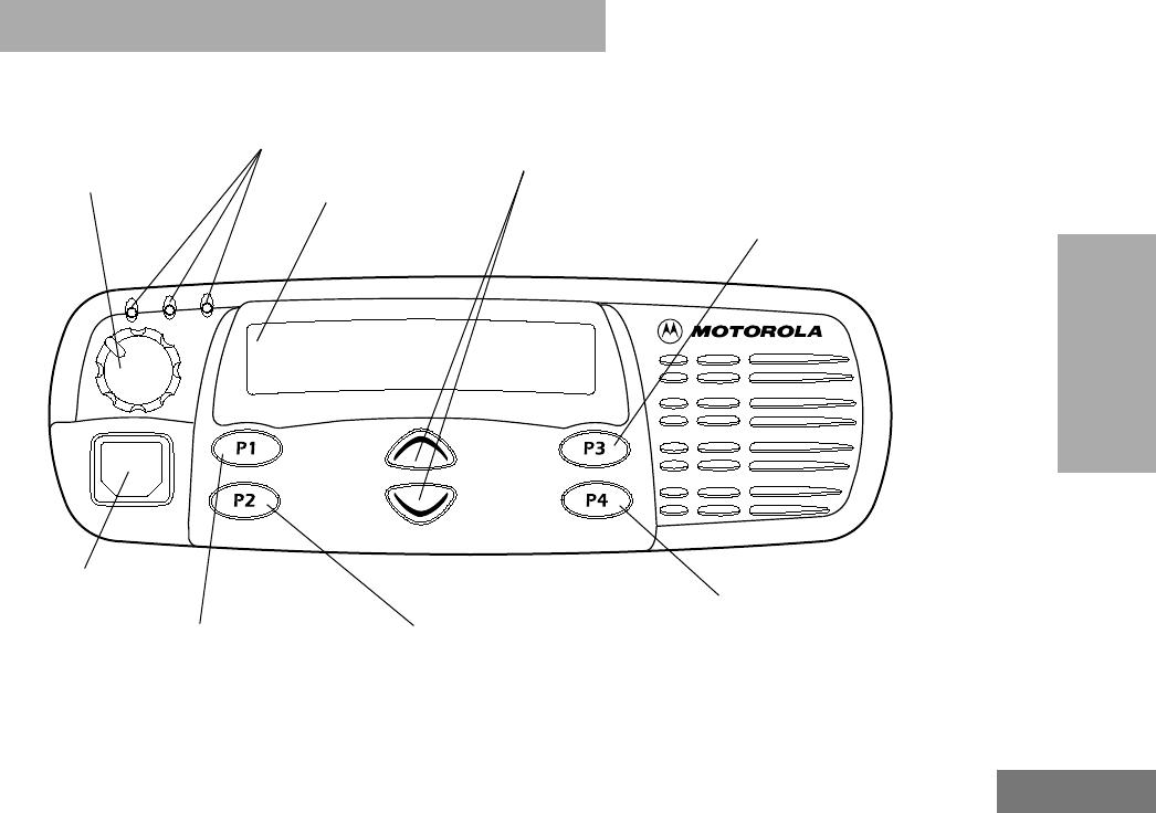 Spanish Manual Motorola Pro 5100 esp