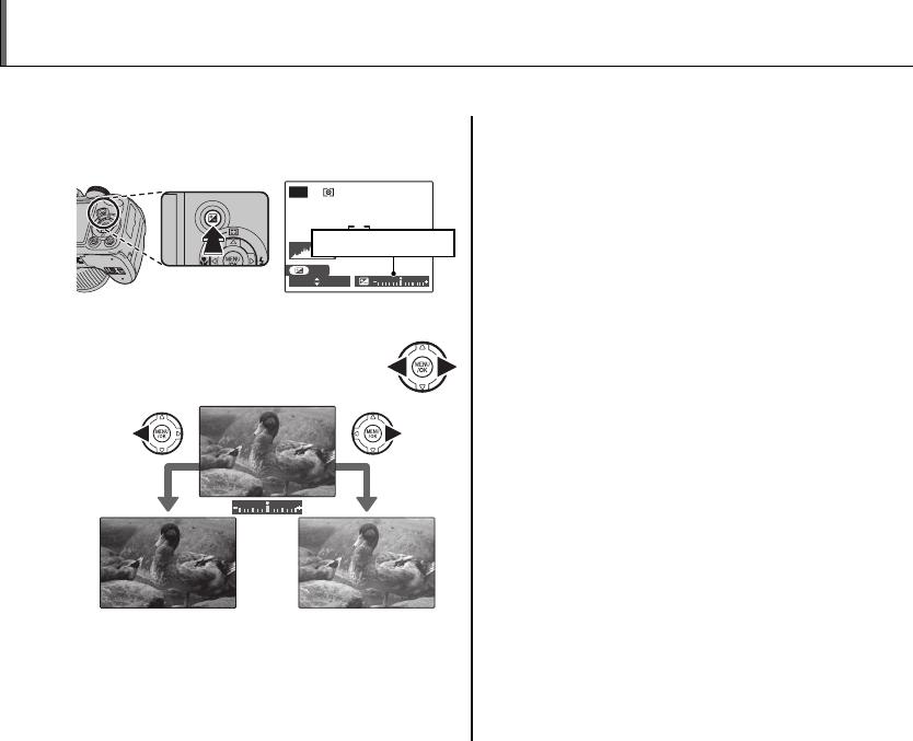 Fujifilm Finepix S4300 Users Manual