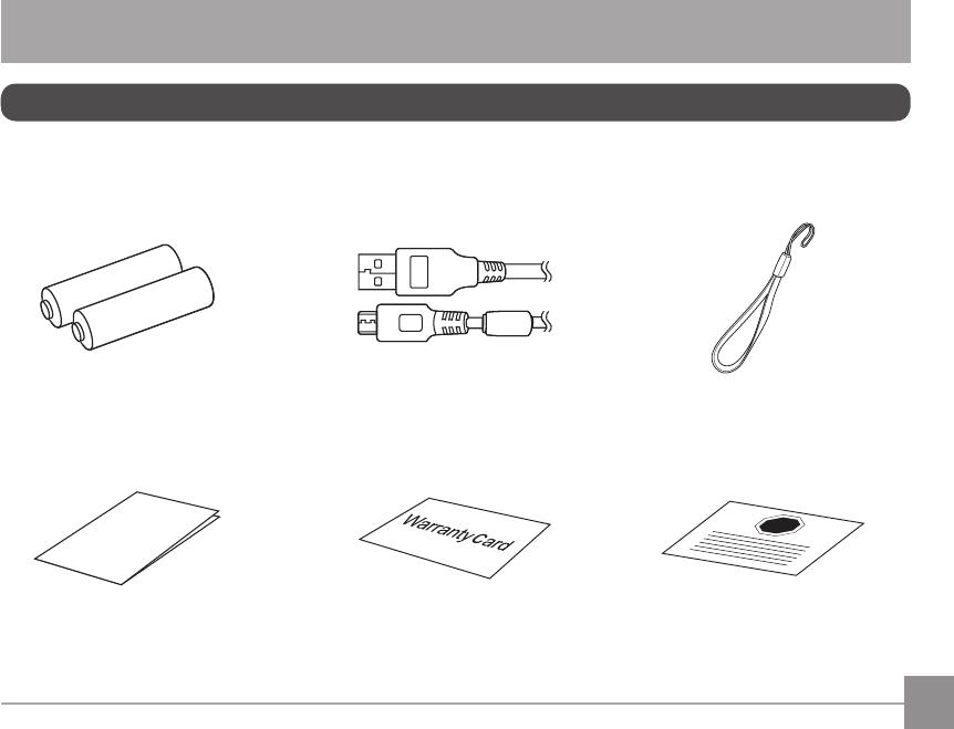 Kodak Pixpro Fz 43 Users Manual