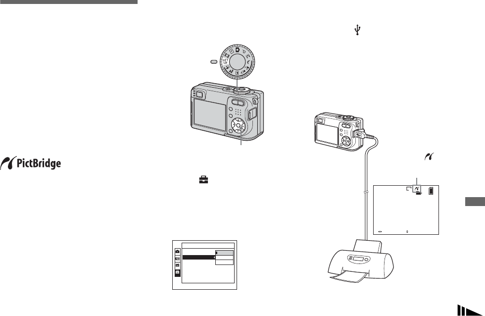 Sony Cyber Shot Dsc W1 Operating Instructions W1/W12