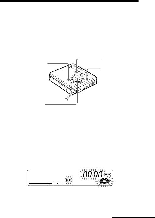 Sony Md Walkman Mz R700 Users Manual