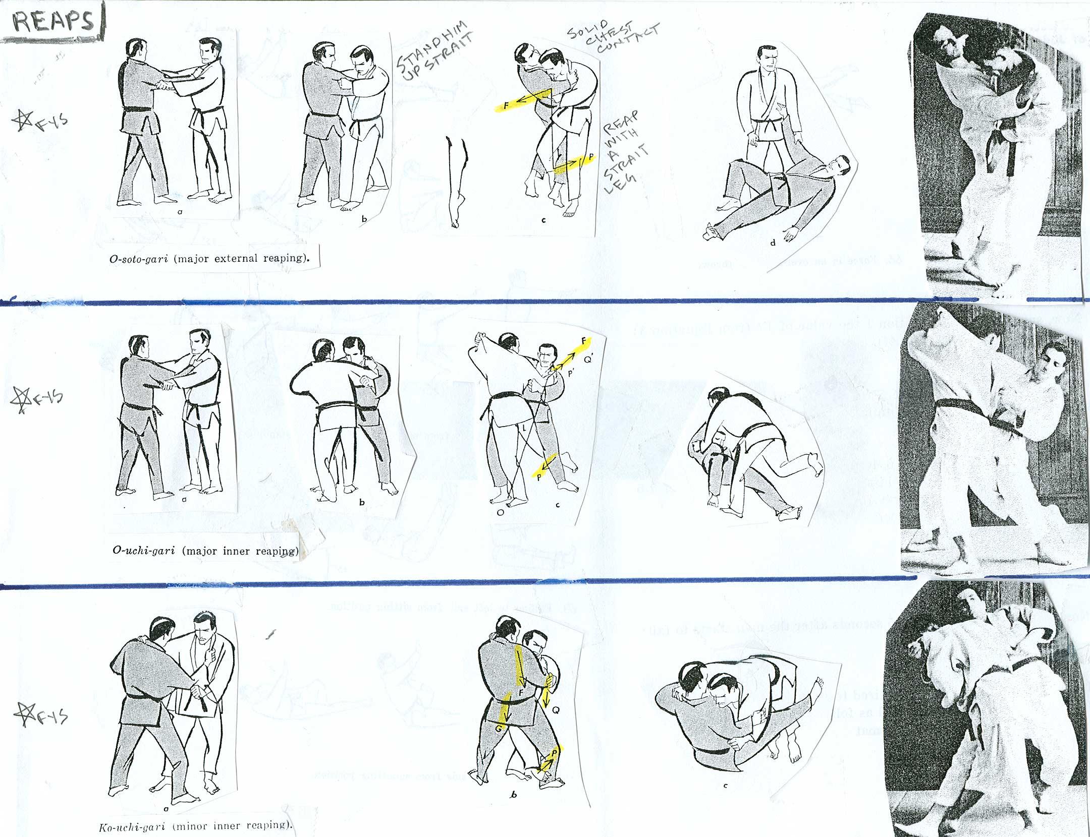 Judo Throws Gallery