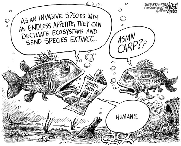 Invasive species in Canada and Climate Change on emaze