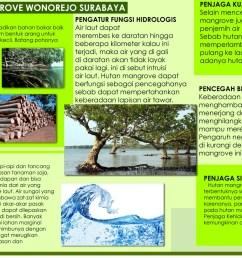 ekowisata mangrove wonorejo surabaya [ 1952 x 1137 Pixel ]
