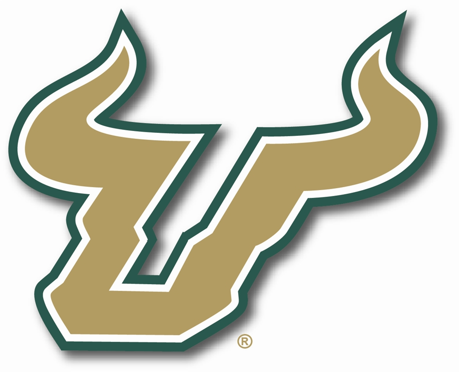 Image result for usf