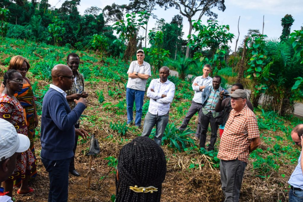 Meeting with farmers in Ekombitie, Cameroon