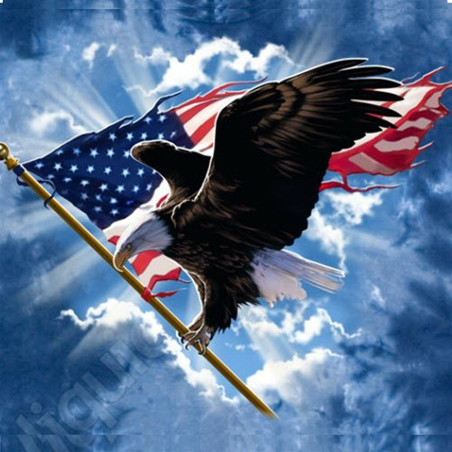 Flying-American-Flag-Eagle