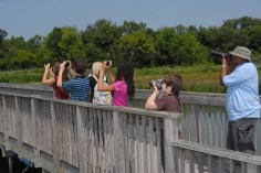 A group of young photographers at John Heinz National Wildlife Refuge in Philadelphia.