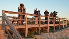 Photographers at Parker River National Wildlife Refuge in Massachusetts.