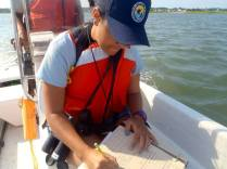 Natalia conducted waterfowl and water quality surveys during her internship.