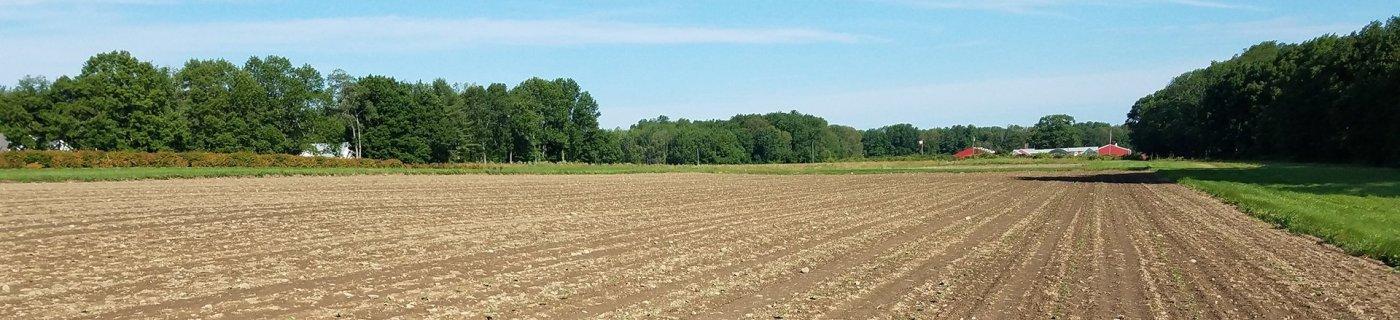 Farm site