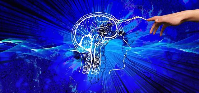 英単語を覚えられない理由を解説【脳をだます覚え方とは?】