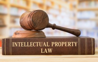 Property Rights - IP Law
