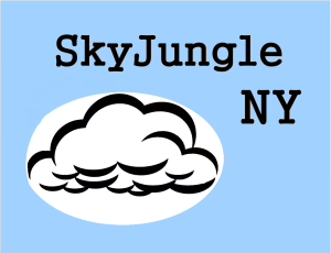SkyJungle_NY