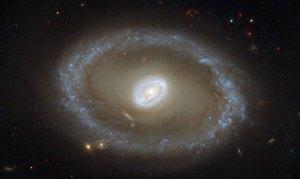 Tässä on galaksi NGC 3081, joka on seyfert-tyyppiä ja sijaitsee 86 vv:n päässä. Sillä on kirkas keskus, jota ympäröi valokehä. Kuva: ESA Hubble.